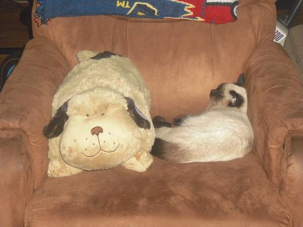 Pillow Pets Puppy Juliet