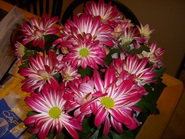 Lb3 Easter Flowers