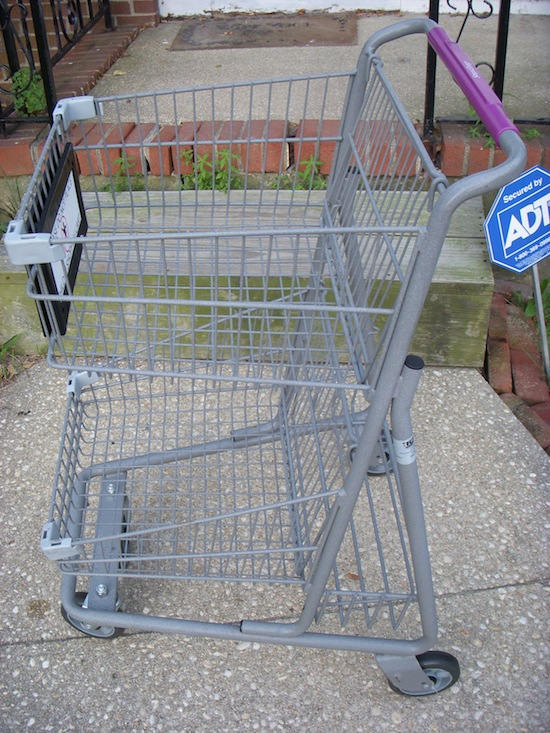Wordless Wednesday Grocery Cart Friend