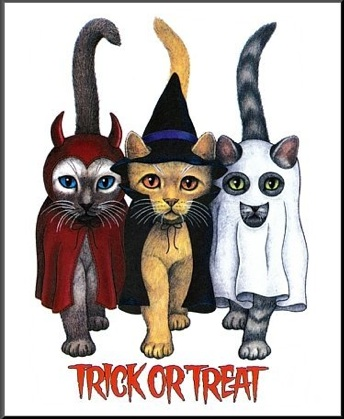 Trick Or Treat Halloween Cats