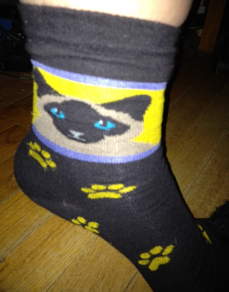 Photo A Day - Siamese Cat Socks