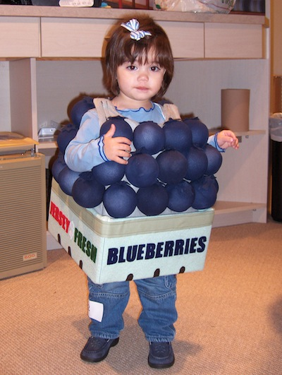 Fabricland Blueberries