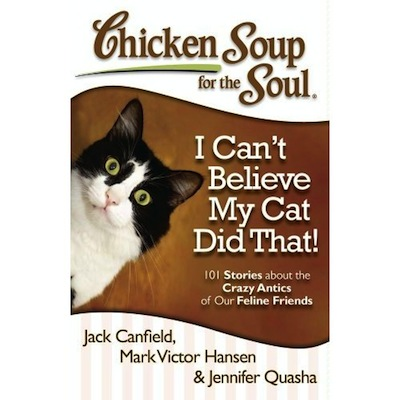 Review And Giveaway Chicken Soup For The Soul I Can T