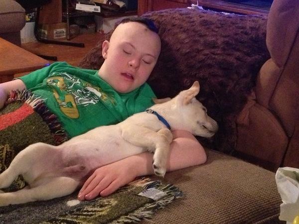 C And Dobby Sleeping