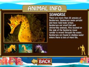 SeaWorld Kids Turtle Trek App