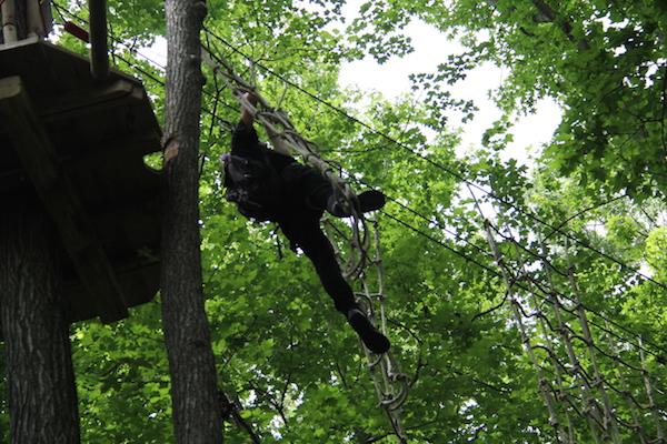 Go Ape Zip Line & Treetop Adventure, Bear DE
