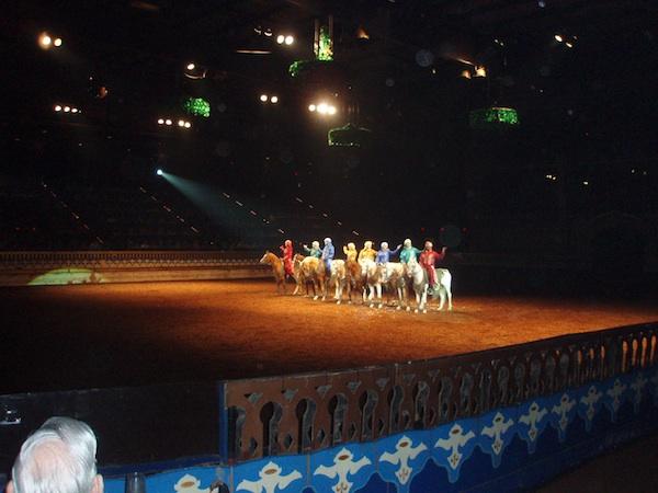 Arabian Nights Dinner Theater, Orlando